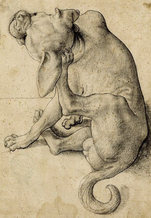 "Neiderlandish (ca. 1600): ""Scratching Dog"""