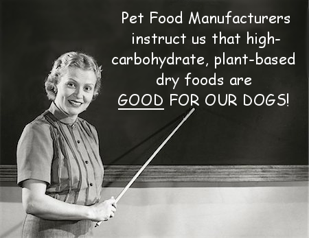 "The leading dry food, Pedigree, has 5 separate grains, and its primary ""meat"" source is from unidentifiable animals (""meat and bone meal"") reduced to a dry powder."