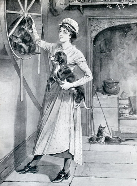 "The Vernepator Cur, or ""turnspit dog"" of the late 1500s; seen as a machine, or kitchen utensil"