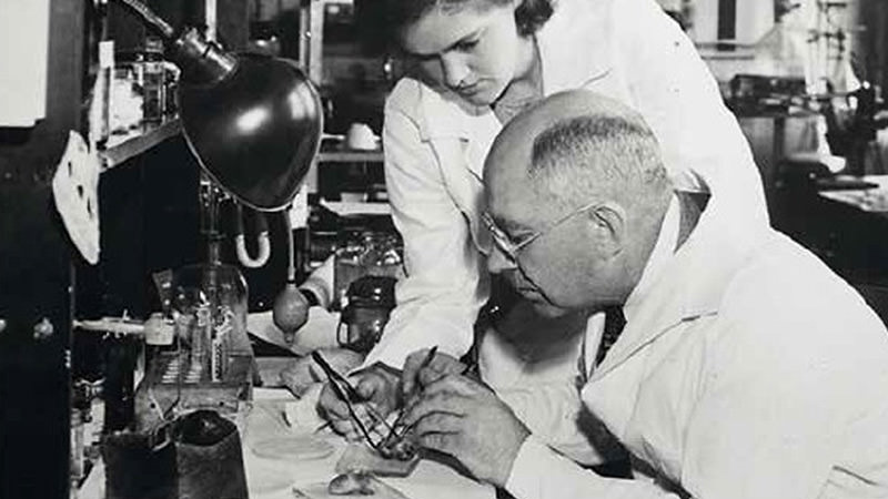 Drs. Frances Oldham Kelsey and EMK Geiling, University of Chicago, on assignment to the FDA