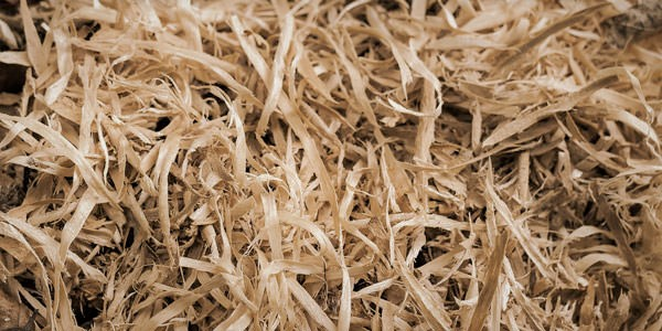 cellulose:wood pulpas a dog foodingredient? -