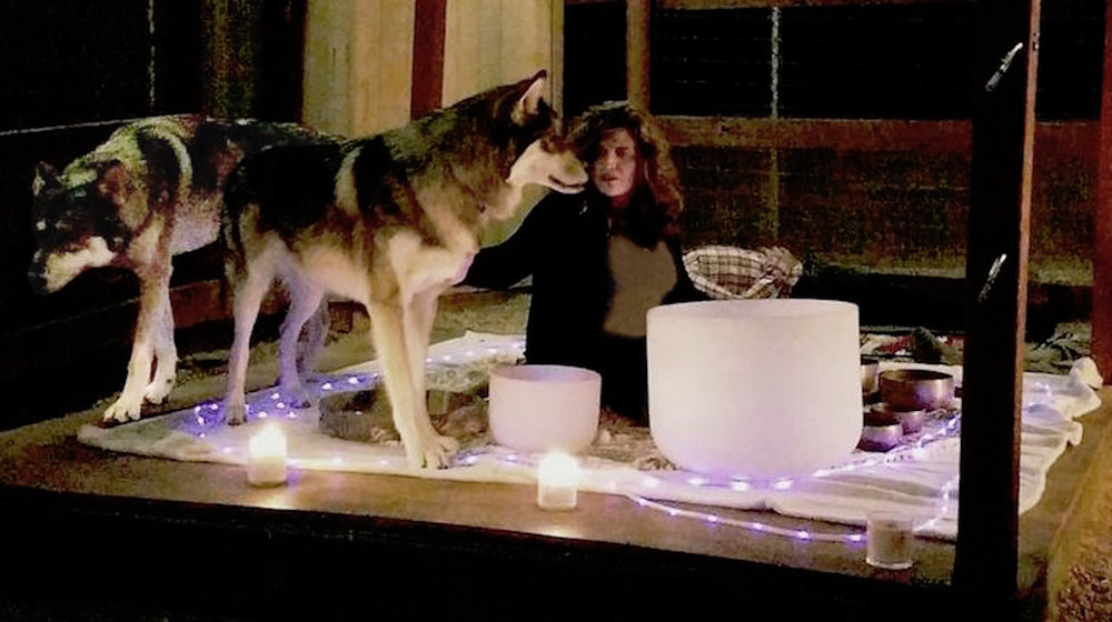 Pictured: Soundbath with the Wolf Ambassadors Apex Pack