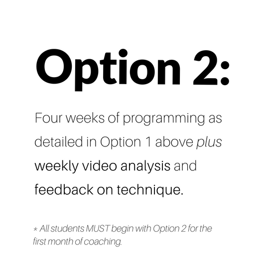 option2*.png