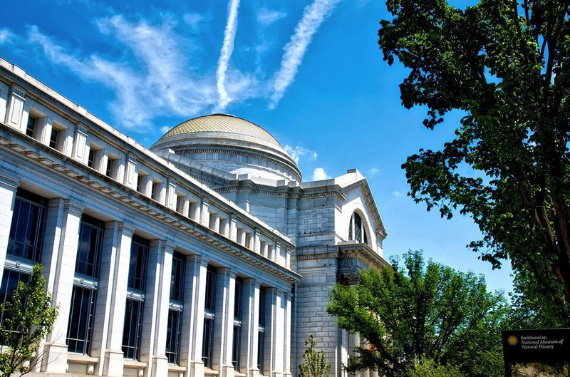 angry_desi-museum-of-natural-history-exteriormydccool-smithsonian.jpg