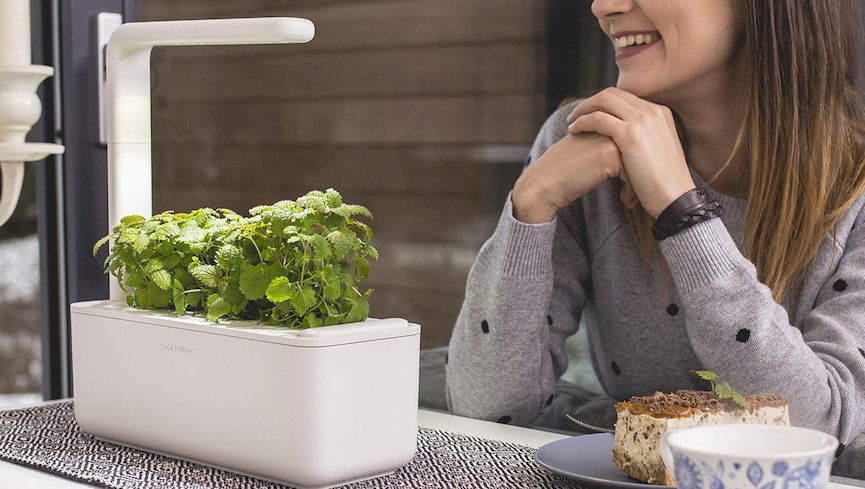 Click and Grow Smart Garned - Your graduate would love this natural addition to their house. Click and Grow aims to help its customer's grow fresh herbs from home, helping the sustainability of our current food industry. Its sleek look makes it great for any counter top. To check out more on the Click and Grow smart garden head on over to their website here