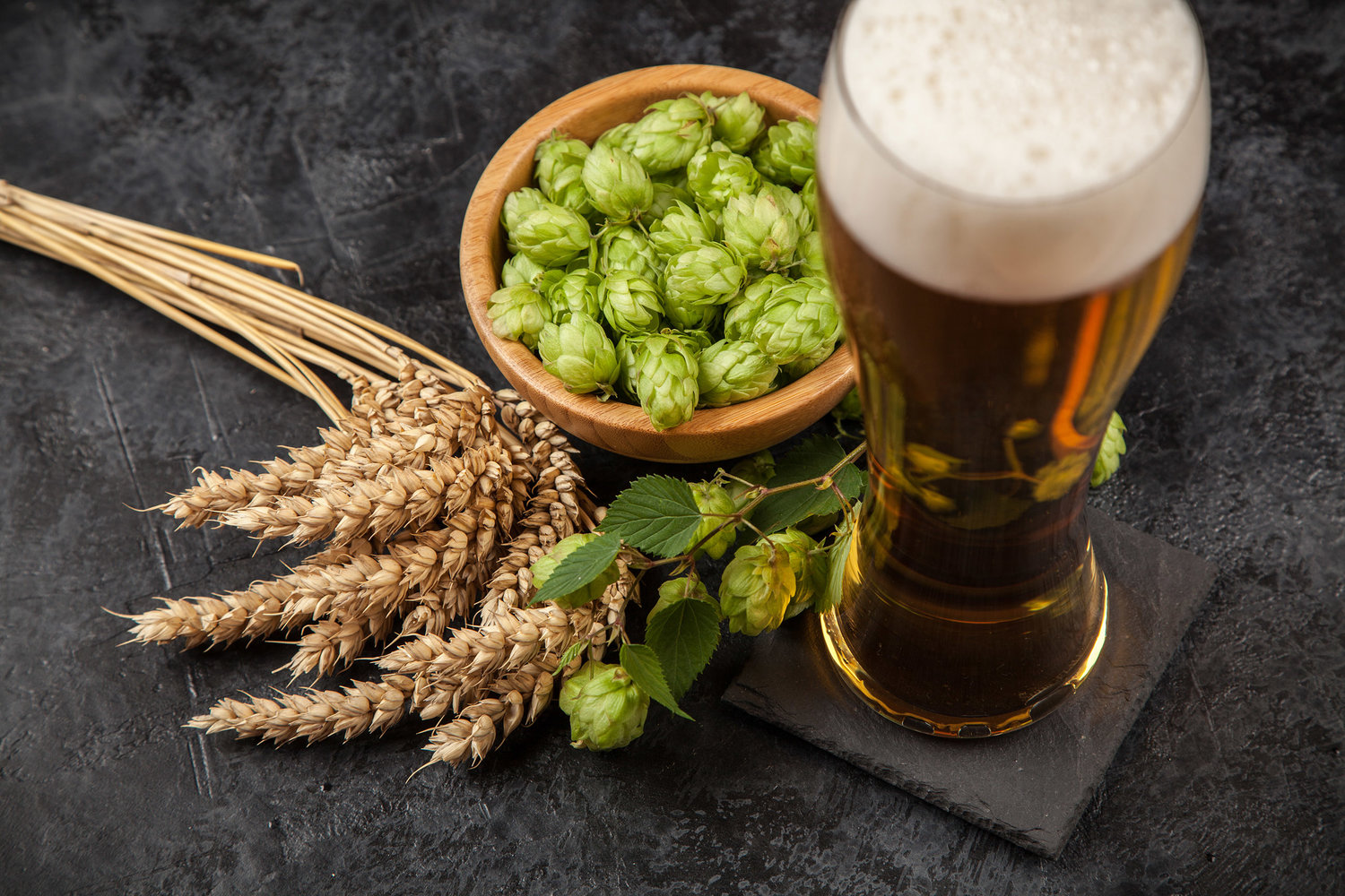 Grain, Hops, Water     now Nugs? — Dividere Stainless