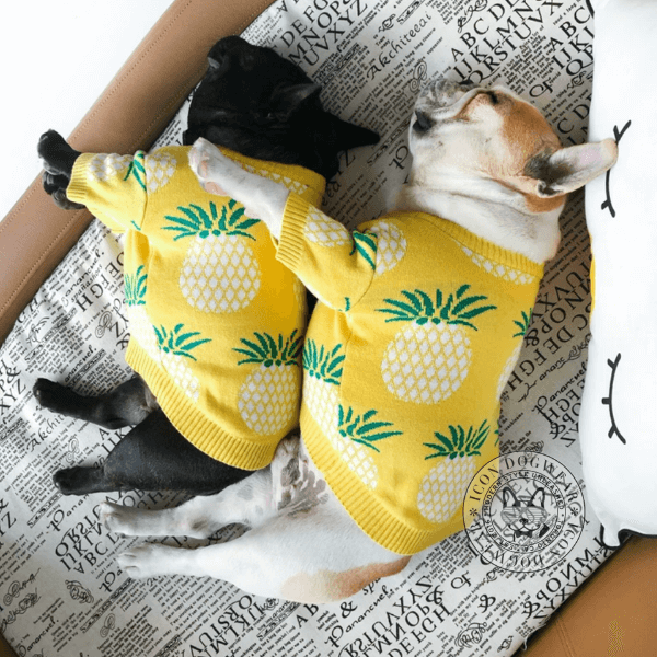 Tropic_Thunder_Dog_Sweater_6_2000x.png