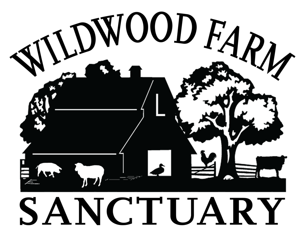 Copy of Wildwood Farm Sanctuary