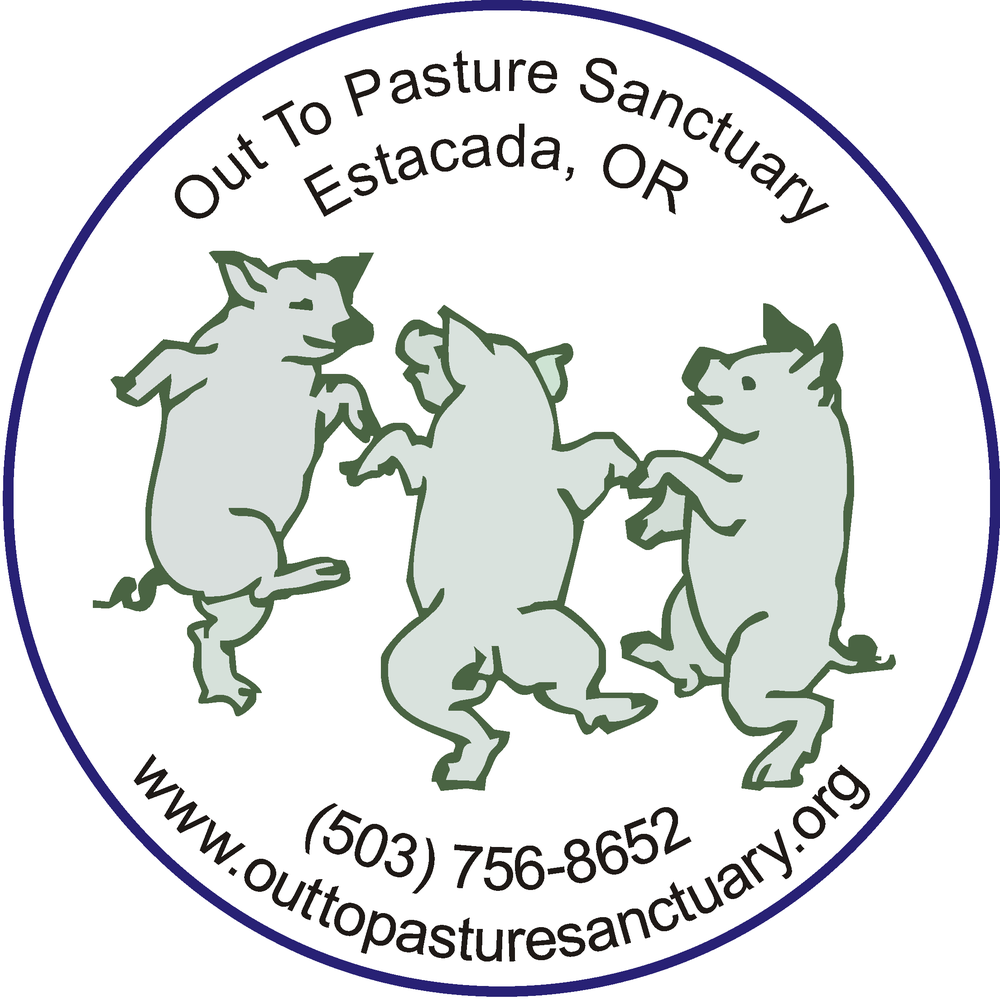Copy of Out to Pasture Sanctuary