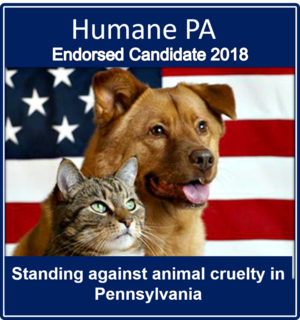 endorse-2018.png