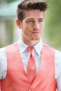 fullback-vest-expressions-windsor-tie-striped