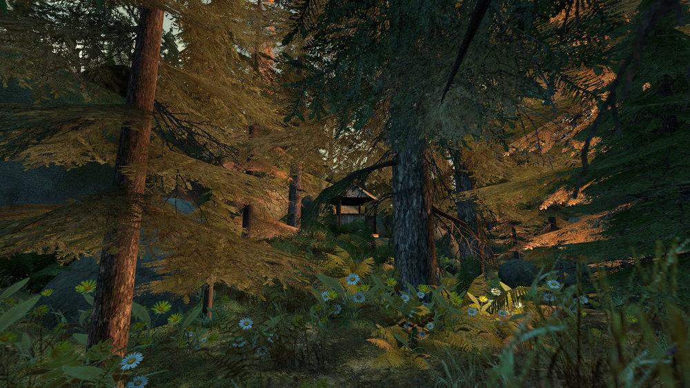 de_forest0039.jpg