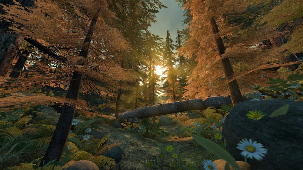 de_forest0041.jpg