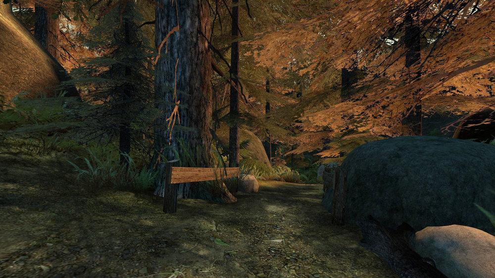 de_forest0049.jpg