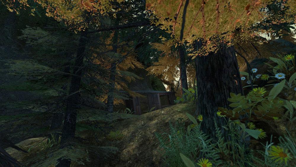 de_forest0056.jpg