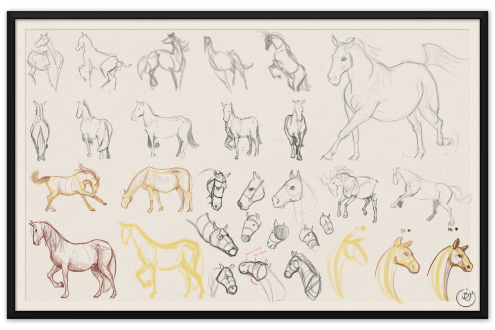 Horse_Drawing_02.png