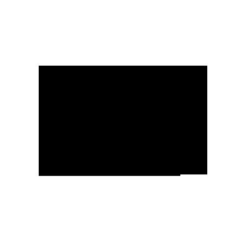 soho house chicago logo.png