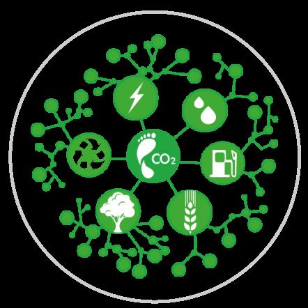 Registra información sobre tus consumos de: combustibles fósiles, gases refrigerantes, electricidad, aguas residuales, residuos sólidos.