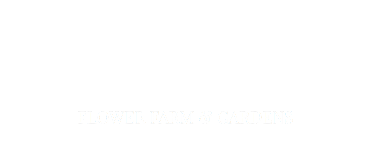 MAYBELLE flower farm