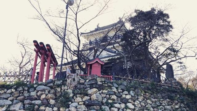 Japan 🇯🇵 featuring @tblablabla #japan #hamamatsucastle #keicar #weouthere #travel #livingmybestlife #blessings