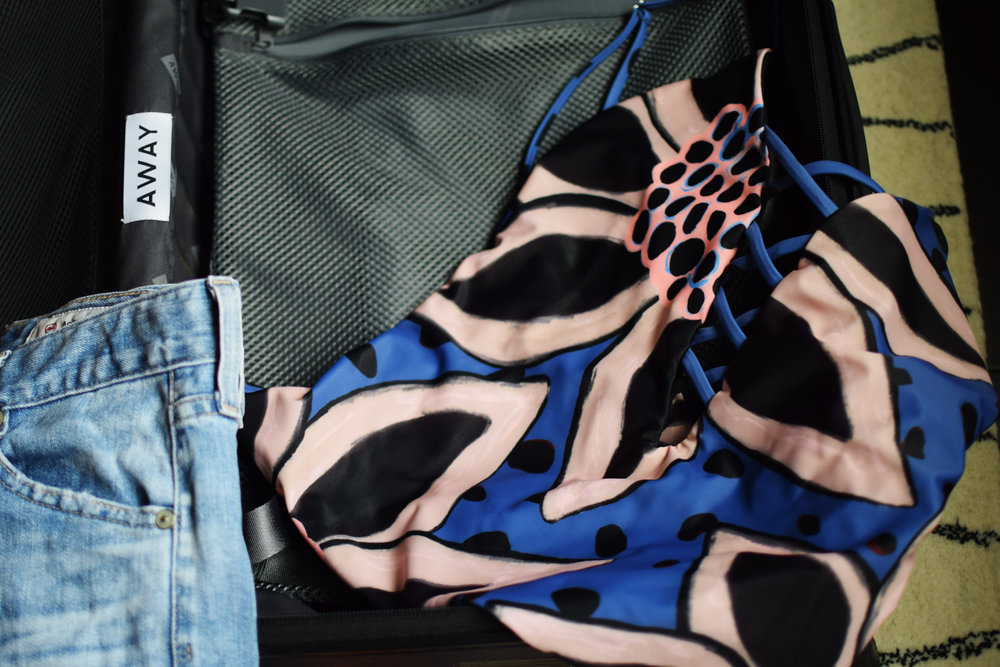 suitcase edit 2.jpg