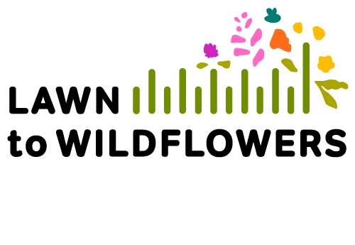 Lawn to Wildflowers