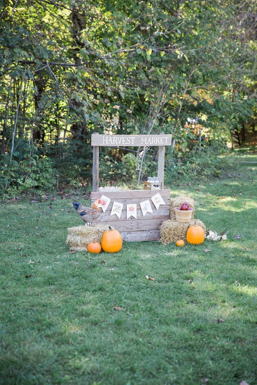 HarvestMarket_140.jpg