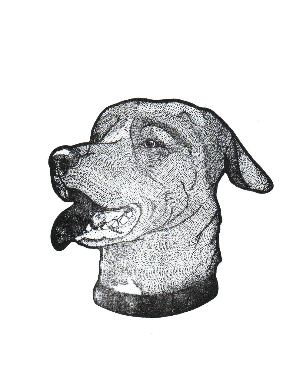 Fenway Print