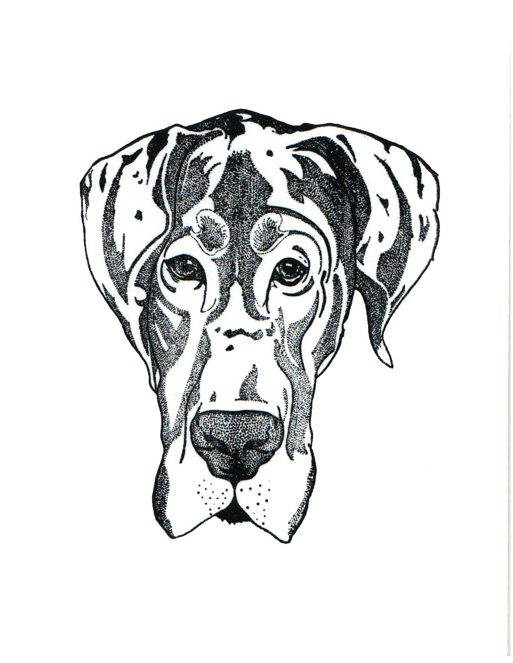 Great Dane Print