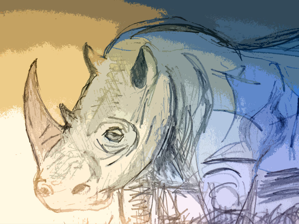rhino-cutout.jpg