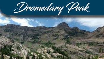 Dromedary Peak.png