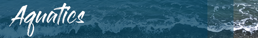 Aquatics Banner.png