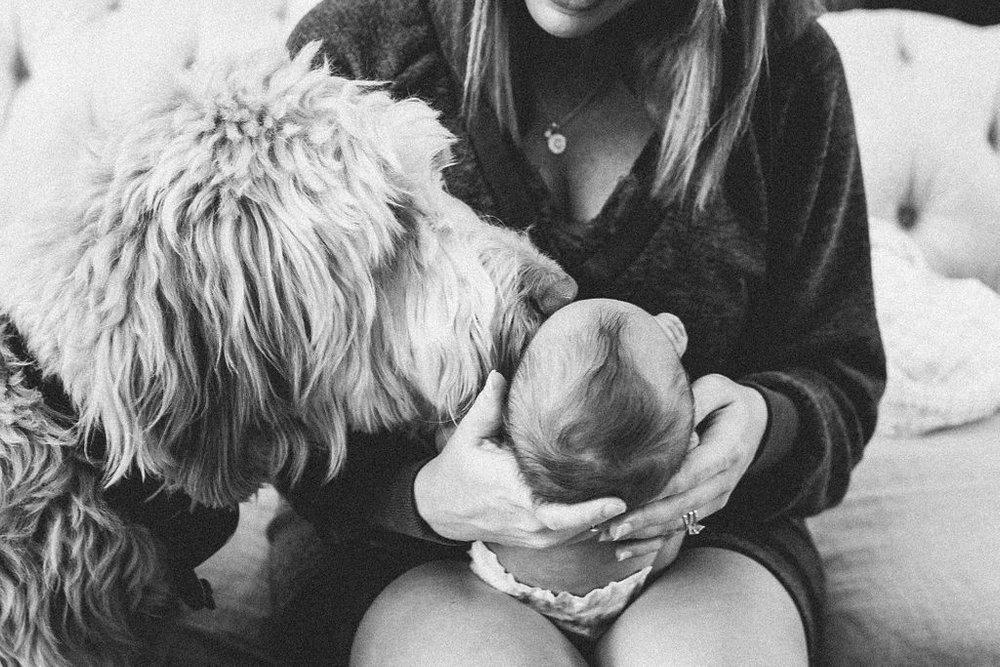 Claire Newborn Lifestyle Blog-17.jpg