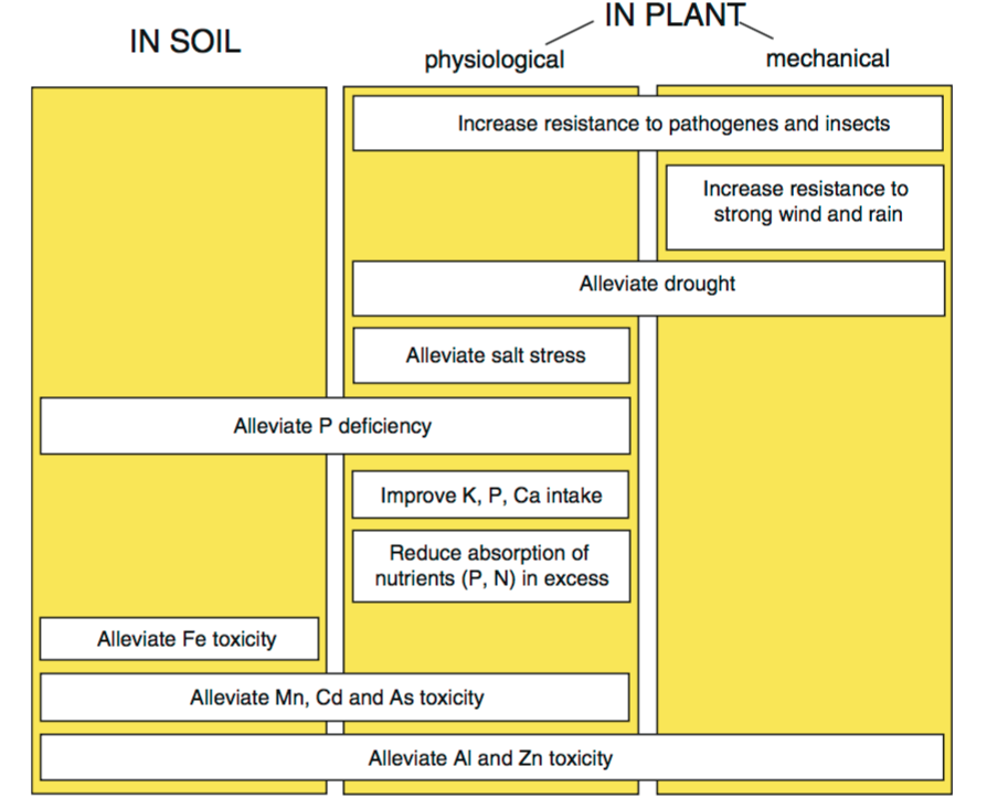 Synthesis of the benefits of Si for crops under various environmental stresses; the mechanical mechanism is due to the presences of phytoliths.