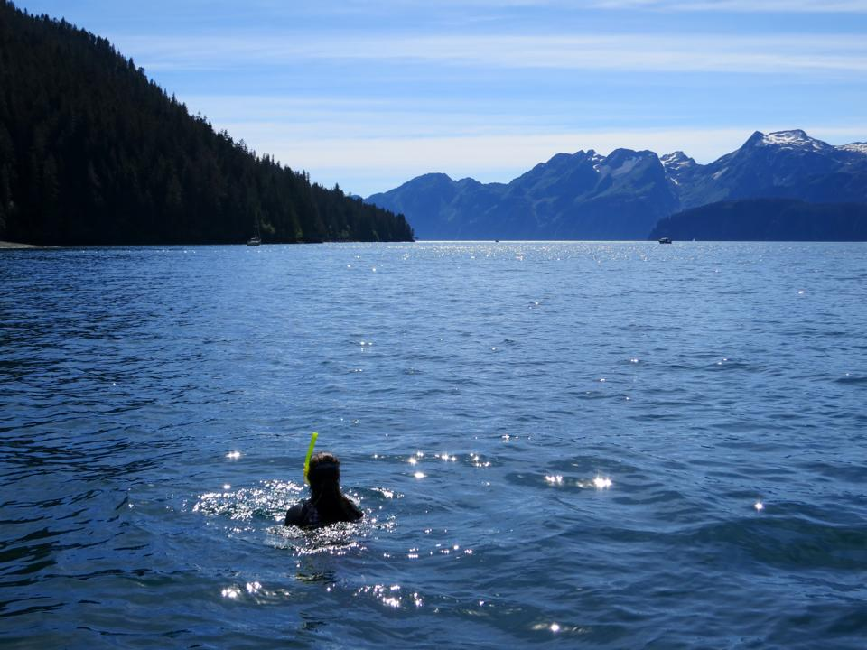 Swimming, with a wetsuit, in Thumb Cove. The water hovers around 40 Fahrenheit, and is only for those brave at heart.