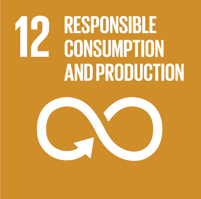 SDG_12.jpg