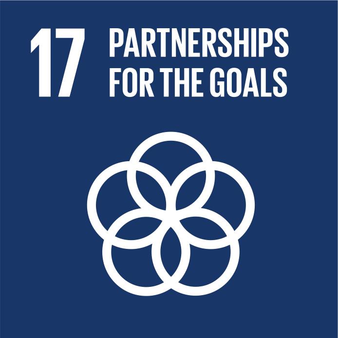 SDG_17.jpg