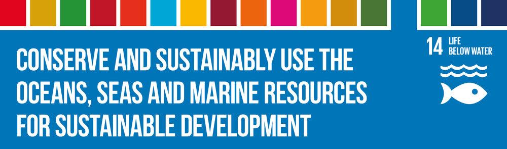 SDG14_Header.jpg