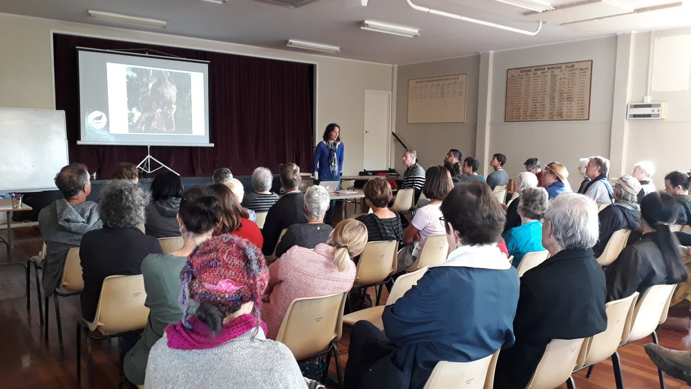 Community Hui attendees listen to a presentation by Mary Frankham