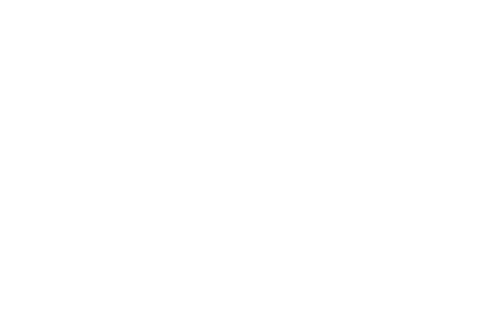 Bridge Generic Logo - White - No Frequency.png