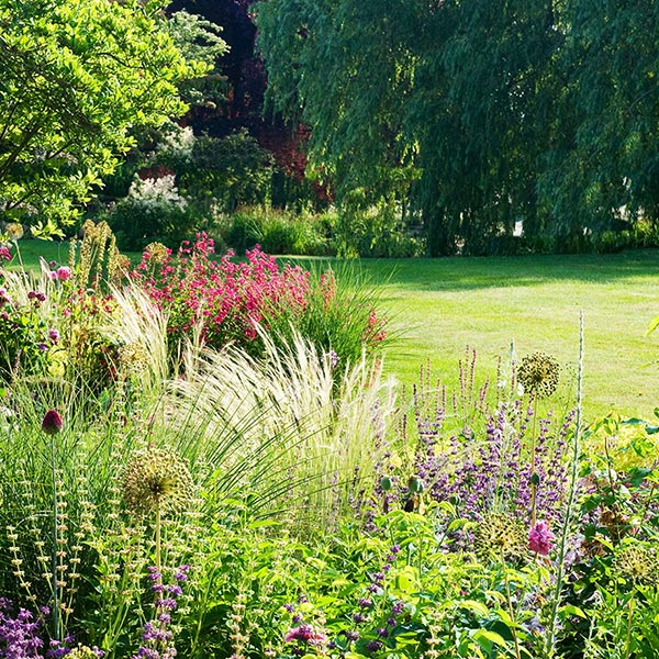 Garden-Maintenance.jpg