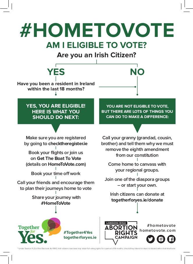 #HomeToVote Flyer Back
