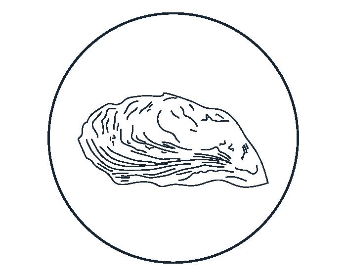 Illustration-02.png