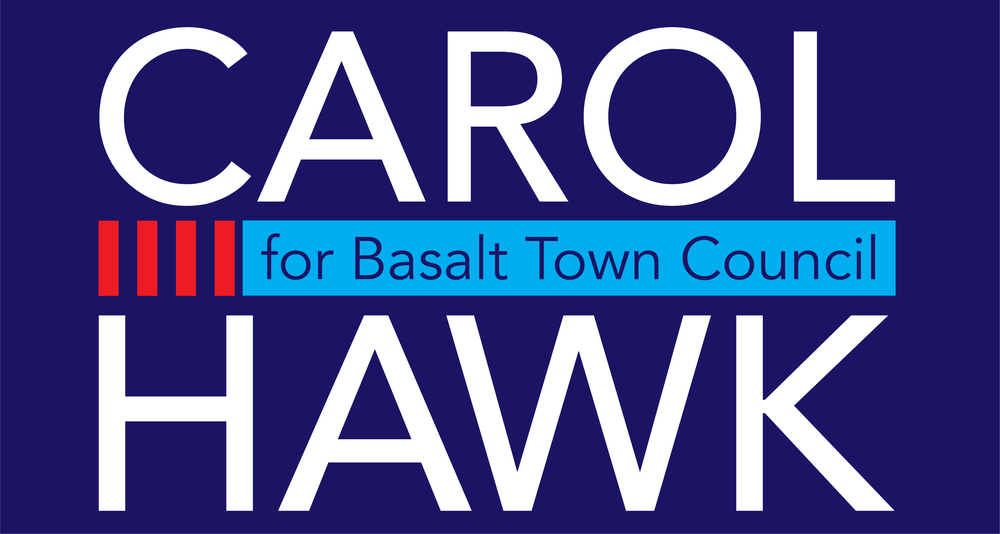 Carol Hawk Election Logo 2018