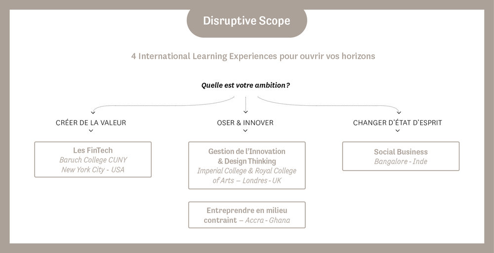 Neomascope-neoma-business-school-Disruptive-scope.jpg