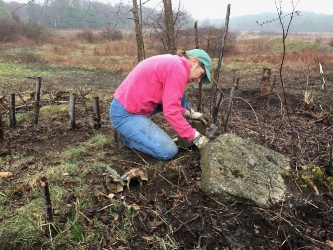 Donna Betts, Owner/Philanthropy Consultant    Volunteering for the Scarborough Land Trust
