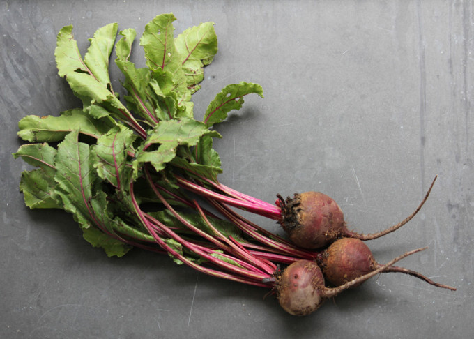 sfc_beets (2)