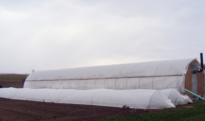 150422 greenhouse and low tunnels