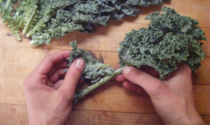 150423 stripping kale leaves