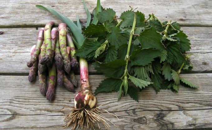 150504 asparagus nettles garlic